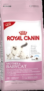 Корм для кошек Royal Canin Renal при проблемах с почками